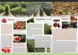 Agrodar-poljoprivreda